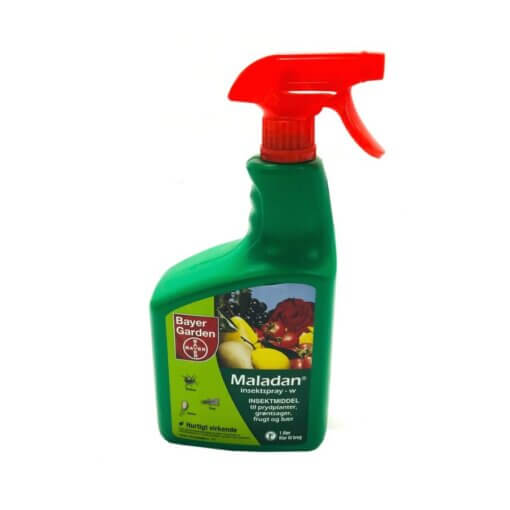 Maladan Insektspray