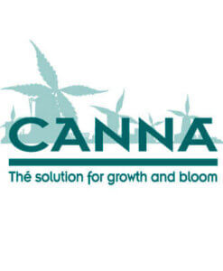 Canna Aqua