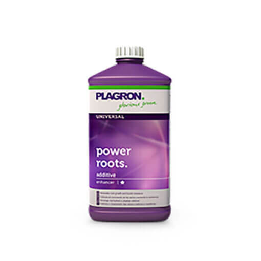 Power Roots 1L