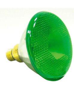 Sylvania Green Light