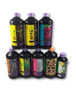 B'cuzz Soil A&B + Blossom Builder Liquid Kit 1L