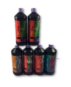 B'cuzz Coco A&B + Blossom Builder Liquid Kit 1L